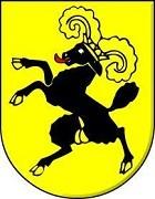 Autoankauf Schaffhausen